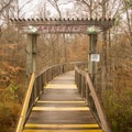 An elevated nature walk brings visitors to the entrance of the arboretum. - Chicot State Park