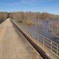A scenic bridge that crosses a central portion of Lake Chicot. - Chicot State Park