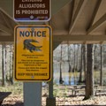 Alligators are present in these waters.- Lake Chicot Water Trail