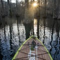 Paddling through Lake Chicot is a real treat. - Lake Chicot Water Trail