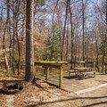 Some campsites at the Chicot State Park Campground come equipped with a deck overlooking the forest. - Chicot State Park Campground + Cabins