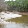 Kisatchie Bayou showing off one of it's sandy beaches. - Caroline Dormon Trail
