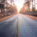 The Longleaf Scenic Byway is a great way to experience the longleaf pines of Kisatchie National Forest. - Longleaf Scenic Byway