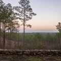 Looking out from the Longleaf Vista after sunset. - Longleaf Scenic Byway