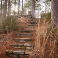 Steps leading up to the picnic area of the vista. - Longleaf Scenic Byway