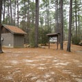 A campground on the western edge of the byway offers primitive camping. - Longleaf Scenic Byway