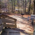 Stairway leading to one of the more private campsites. - Kisatchie Bayou Campground