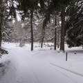 Roads are plowed by the camp hosts.- Link Creek Winter Yurt
