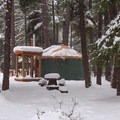Yurt 34 through the trees.- Link Creek Winter Yurt