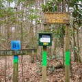 The trailhead for the Nature Trail. Information about the Wildlife Management Area can be found here. - Tunica Hills Wildlife Management Area Hiking Trails