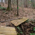 Constructed features to help offset erosion along the trail.- Tunica Hills Wildlife Management Area Hiking Trails