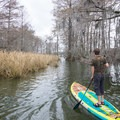 Navigating between the grasses and trees keeps the paddling interesting. - Lake Bruin Water Trail