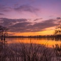 Louisiana is beautiful!- Lake Bruin State Park