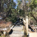 After seeing the upper Falls, take the stairs until you reach the trail to the right.- Swallow Falls State Park