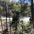 There are many opportunities to view the Youghiogheny River along the trail.- Swallow Falls State Park