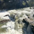 A view of the lower falls.- Swallow Falls State Park