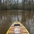 Rolling downstream on a high-water Saline Bayou.- Saline Bayou