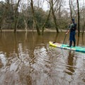 Paddling in a flooded lagoon.- Whiskey Chitto Creek