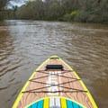Heading downstream on Whiskey Chitto.- Whiskey Chitto Creek