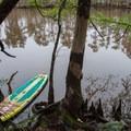 Pulled over to rest on shore.- Sam Houston Jones State Park Paddling