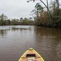 Heading upstream on Calcasieu West Fork.- Sam Houston Jones State Park Paddling