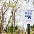 Franklin Canal borders the national wildlife refuge.- Franklin + Bayou Teche Paddle Trails