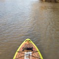 It's easy enough to paddle against the current.- Bayou Macon