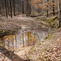 Small creek crossing on the 10-mile trail loop.- Lincoln Parish Park