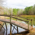 Small pond and footbridge near the group picnic areas.- Lincoln Parish Park