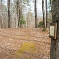 The Tree Trail teaches about species and nature.- Lincoln Parish Park