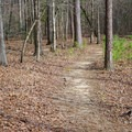 Trails are open to hikers and bikers.- Lincoln Parish Park