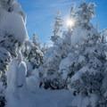 Nearing Mount Starr King's summit.- Mount Starr King + Mount Waumbek Snowshoe