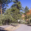 Red Canyon Campground's roads are nicely paved.- Red Canyon Campground