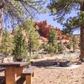 Typical campsite with nice views.- Red Canyon Campground