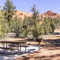 Typical campsite.- Red Canyon Campground