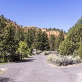 Red Canyon Campground.- Red Canyon Campground