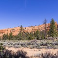 View of the red cliffs across the road from the campground.- Red Canyon Campground