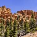 The trail climbs steadily.- Golden Wall Trail Hike
