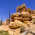 Red rock hoodoos.- Golden Wall Trail Hike
