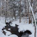 Stream along Dashingdown Road.- Meadow Lake Trail Snowshoe