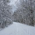 Dashingdown Road.- Meadow Lake Trail Snowshoe