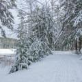 Along the Lake Trail.- Meadow Lake Trail Snowshoe