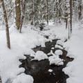 Stream along the Lake Trail.- Meadow Lake Trail Snowshoe