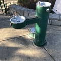 Drinking fountains for dogs and humans.- Salem Riverfront City Park