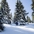 The trail up Needle Peak and The Flatiron is a winter wonderland- Coquihalla Summit Recreation Area