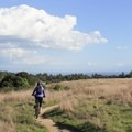 Enjoying the views and singletrack along the Twin Oaks Trail.- Wilder Ranch Trails