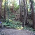 The Enchanted Loop.- Wilder Ranch Trails
