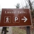 Trailhead signage for the short hike to Laurel Falls. - Laurel Falls