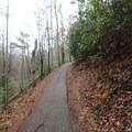 Paved trails take hikers to Laurel Falls.- Laurel Falls