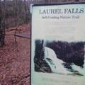 Trail description for Laurel Falls.- Laurel Falls